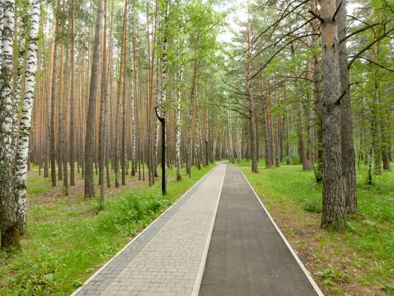 20200628. Красноярск. В парке у СФУ на Сопке.