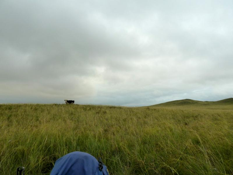 20130910. Вид из двери палатки на стоянке в холмах у сопки Колымшокы.